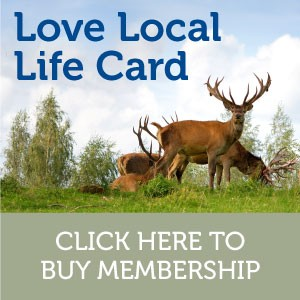 Membership-Love-Local