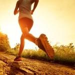 SunRay Fitness & Nutrition
