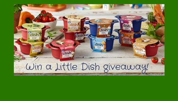 little-dish-giveaway-1