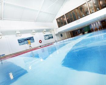 Nizels-Pool10